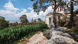 «Ζούγκλα» έγινε το Εθνικό Αστεροσκοπείο Αθηνών