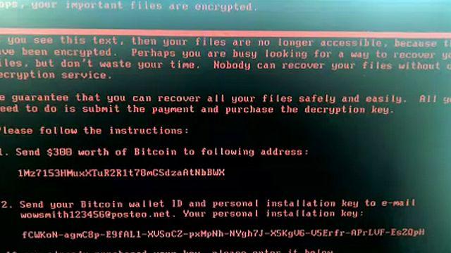 La strage globale del virus informatico Petya