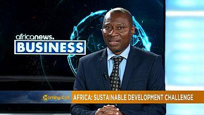 Afrique: les enjeux du developpement durable