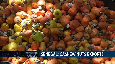 Senegal: Cashew nut exporters suspend transactions due to price hikes[Business Africa]