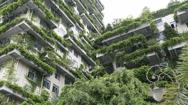 رونمایی از اولین طرح «شهر-جنگل» جهان