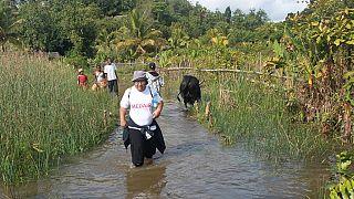100 jours après le cyclone Enawo, Magadascar peine à se relever