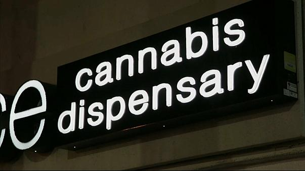 Nevada: Marihuana zum Freizeitgebrauch