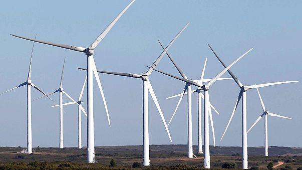 Rekordot ért el Németország megújuló energiahasználatban