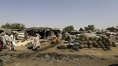 Niger : 9 personnes tuées et des dizaines d'autres kidnappées par des présumés membres de Boko Haram