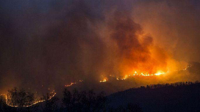 الحرائق تلتهم 253 هكتارا في غابات طنجة