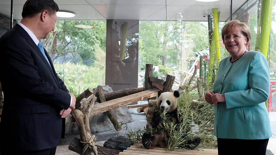 Paws for thought: Merkel and Xi visit Berlin Zoo