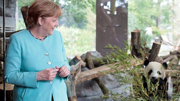 Merkel und Xi Jinping wollen engere Zusammenarbeit