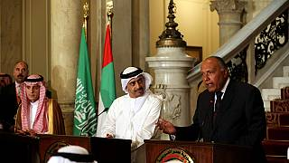 Arab demands put to Qatar non-negotiable, says Egypt