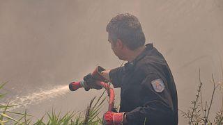 Συναγερμός από πυρκαγιά στο Κρυονέρι Αττικής