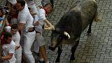 Tourists gored at start of Pamplona's San Fermin bull-run