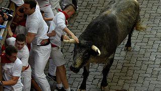 Stierhatz in Pamplona: US-Tourist (29) am Hoden aufgespießt