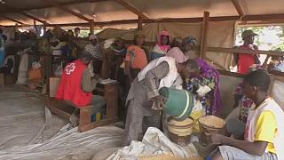 Mobile money transfers give refugees in Cameroon choices of products