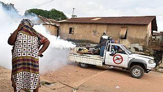 Côte d'Ivoire: au moins 100 cas de dengue confirmés