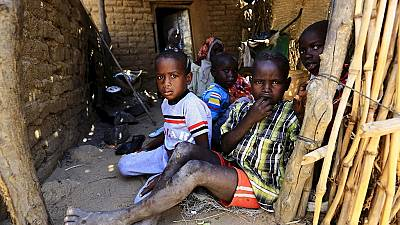 UN report on acute malnutrition in Darfur 'inaccurate', Sudanese official says