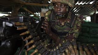 Nine beheaded in Kenya by suspected insurgents