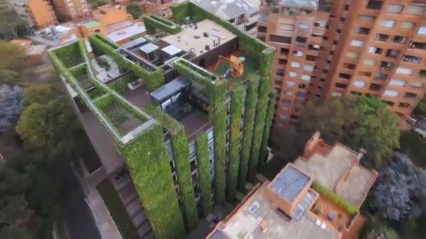 Colombia: Bogota 'vertical gardens' hint at greener future