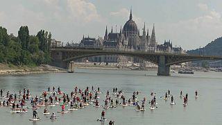 Stehpaddeln auf der Donau