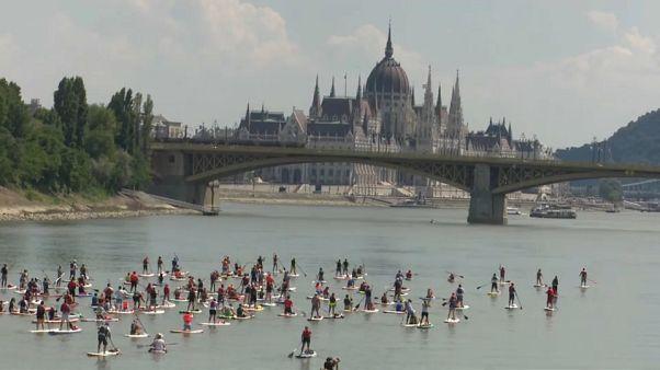 Сапсерфинг на Дунае: когда волна не нужна