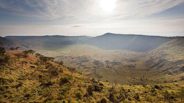 Image: Queen Elizabeth National Park in Uganda