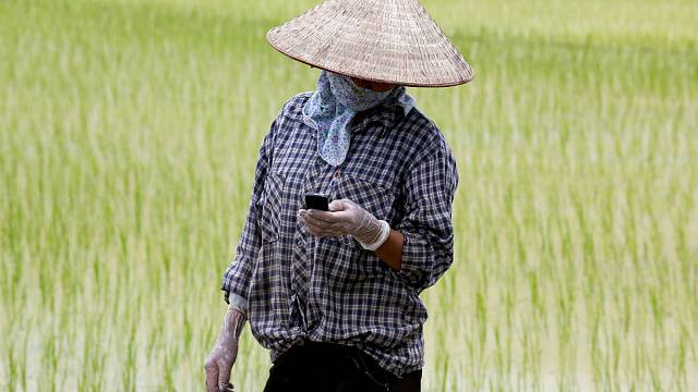 View: Asian future farms