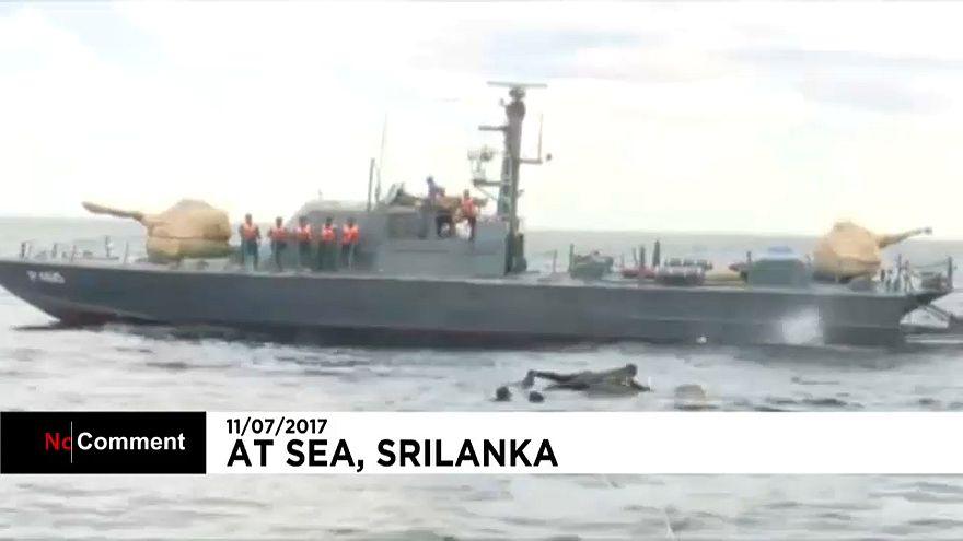 Sri Lanka'da denize sürüklenen fil kurtarıldı