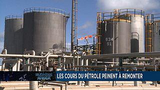 Petroleum price crisis