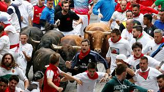 Eight injured after bulls rampage through Pamplona