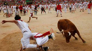 Ten hurt in final Pamplona bull run