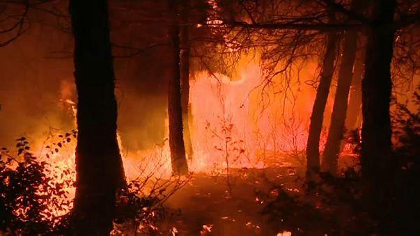 Emergenza incendi dai Balcani al Portogallo; fiamme a Capalbio