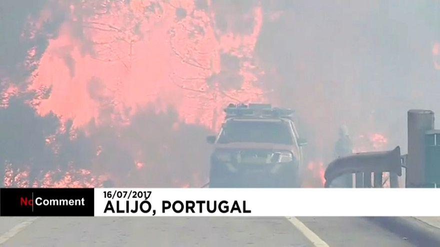 Incendio en Alijó, Portugal