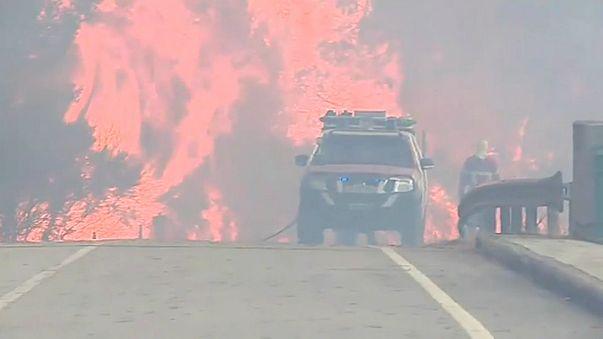 Incêndios no norte do país evoluem de forma favorável, diz ANPC