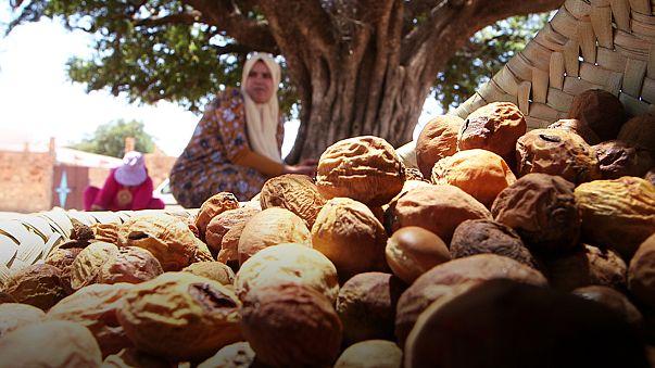 Az argánolaj Marokkó aranya