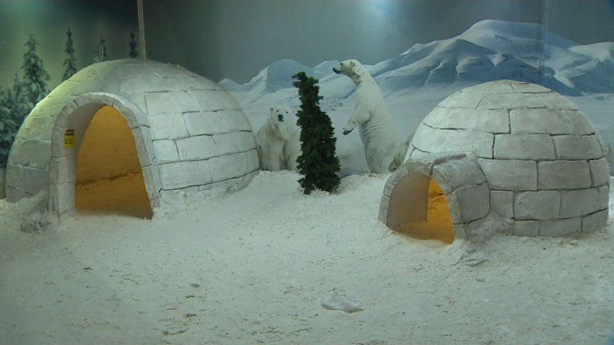 Kar Dünyası: Antalya'nın kar eğlencesi