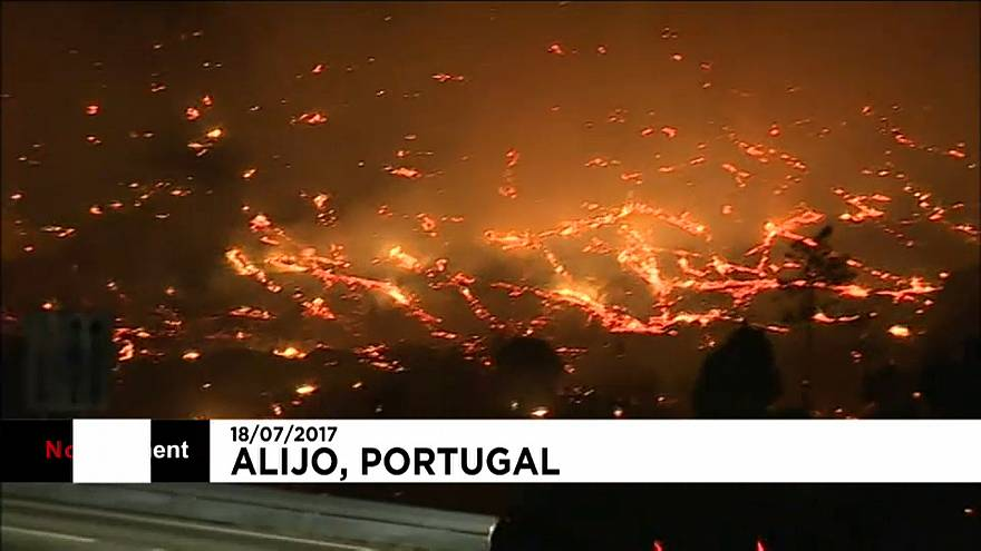 Firefighters battle to control forest blazes in Portugal