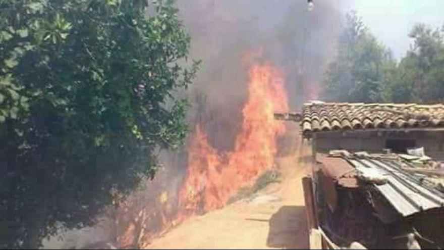 حرائق تلتهم آلاف الهكتارات و تيزي وزو الأكثر تضرراً