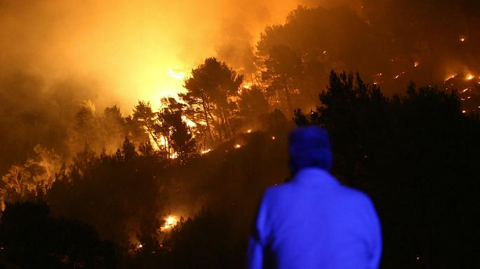 Climate change blamed as EU's forest fires nearly treble in 2017