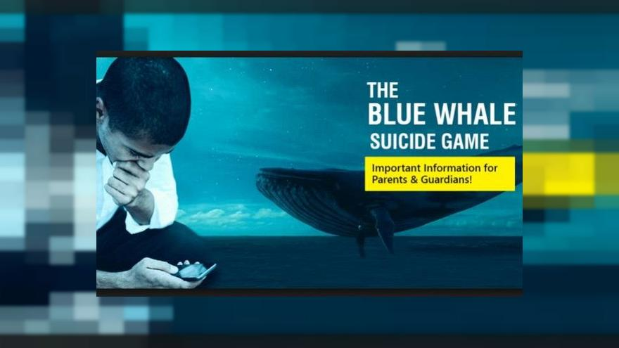 Man behind blue whale suicide 'game' is jailed