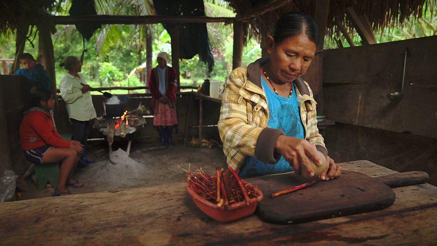 درمان سیل زدگان بولیوی با طب سنتی