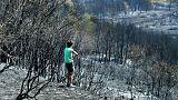 Szenes táj, kiégett autók és házak a tűz után Horvátországban