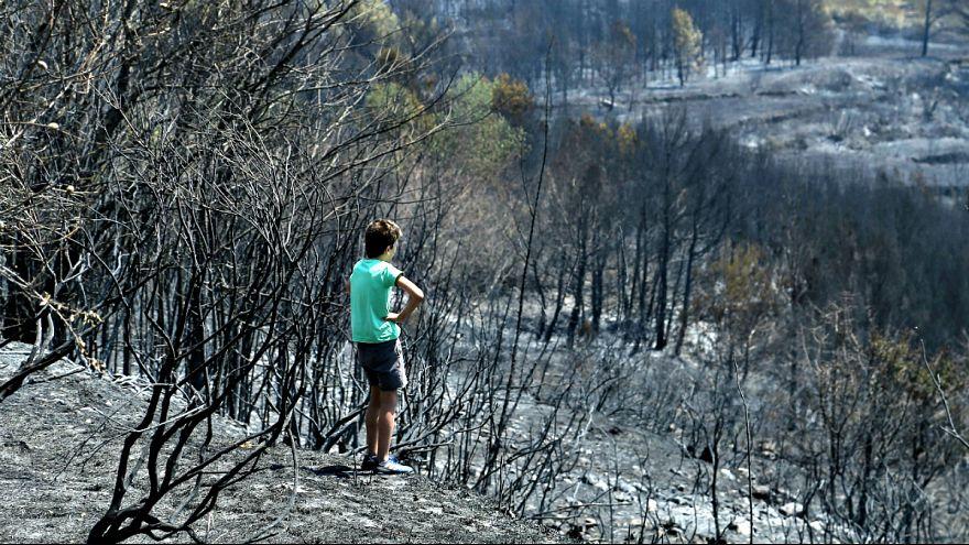 Waldbrände an der Adriaküste in Kroatien
