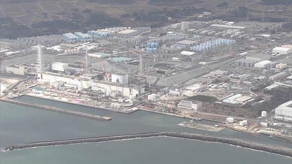 Fukushima: il robot chiamato *pesce luna*
