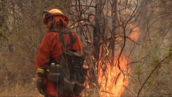 California'daki orman yangınında 5 bin kişi tahliye edildi