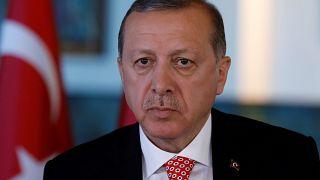 Erdogan verbittet sich Kritik aus Deutschland