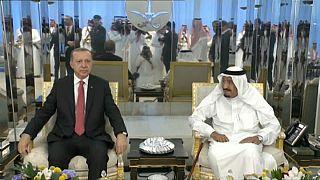 Erdoğan Körfez turunda