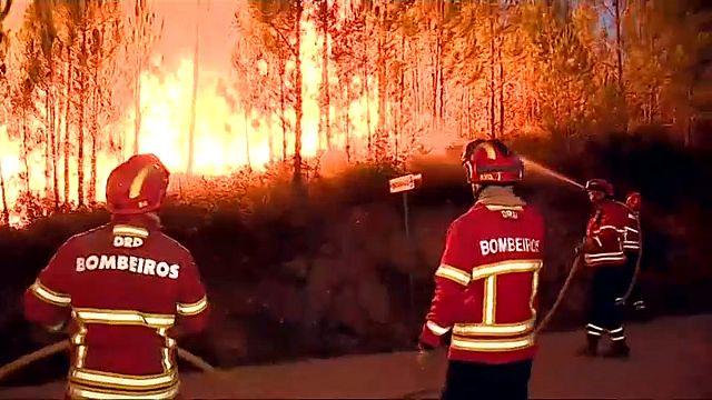 Portekiz'i yeniden yangın paniği sardı
