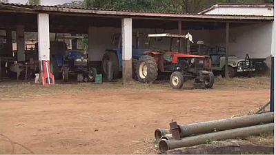 Zimbabwe : l'indemnisation des fermiers au centre d'une polémique