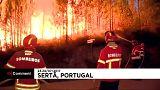 Cientos de bomberos luchan contra las llamas en el centro de Portugal