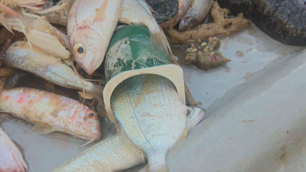Les vêtements recyclés de la mer