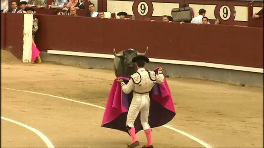 Toros en Baleares: sin muerte ni sangre